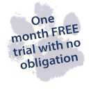 Paw Graphic and  One month free trial with no obligation